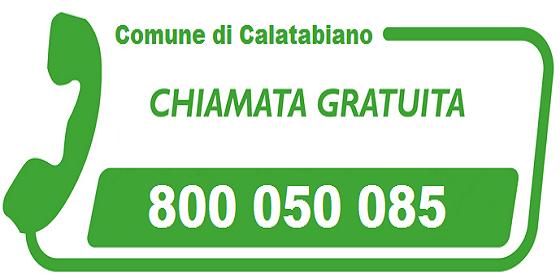 Chiama il numero verde 800050085